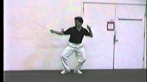 Prince of Persia Animation Reference 1988