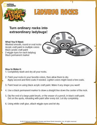 LadybugRocks