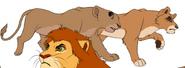 Chifu's Pride-7