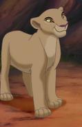 Meetra lioness