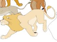 Chifu's pride-13