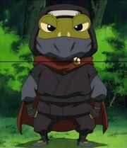 Frog Ninja