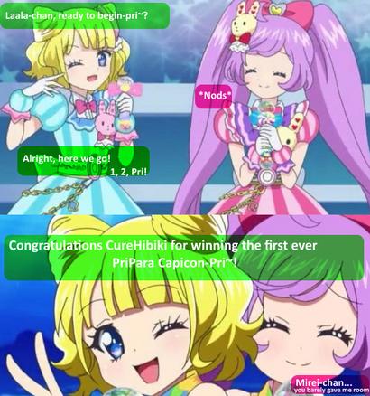 CureHibiki Prize