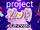 Project PriPara Runway