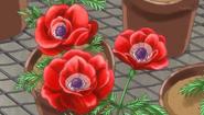 34flower