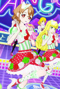 Tricolore Butterfly Coord