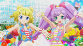 PriPara-08-Performance24