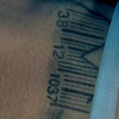Tattoo prison break wiki fandom powered by wikia bbarcode 38 12 malvernweather Choice Image