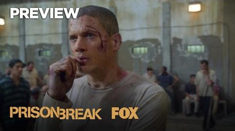 Not All Deaths Are The Same Season 5 PRISON BREAK