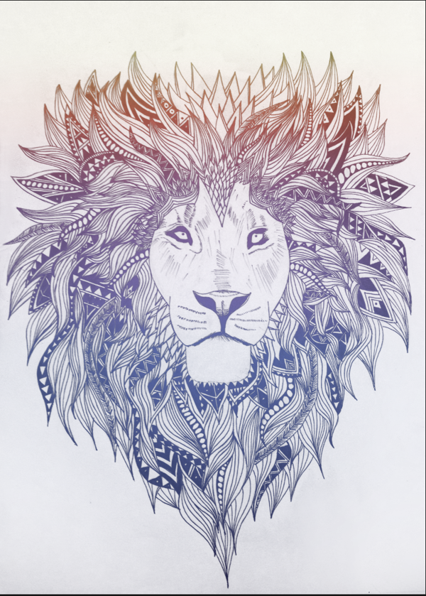 Image - Lioness.png | Prodigy Math Game Wiki | FANDOM ...