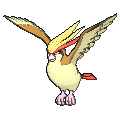 Pidgeot XY