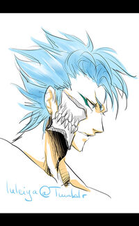 Grimmjow.Jeagerjaques.full.1377175