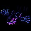 Galaxy Kyogre