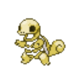 Skeletal Squirtle