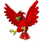Mascot Pidgeotto