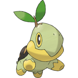Turtwig Project Pokemon Wiki Fandom Powered By Wikia
