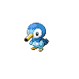 Noot Piplup