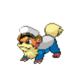 Manly Growlithe