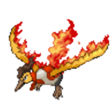 Team Leader Moltres