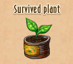 Survivedplant