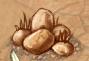 Heap of Stones 7b