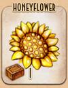 Honeyflower - Warehoused