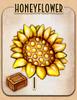 Honeyflower