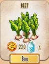 Seed - Beet