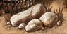 Heap of Stones 6