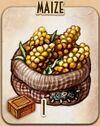 Crop - Maize - Warehoused