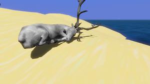 Dead Albino deer