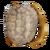 TurtleShellChestplateIcon