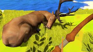 A dead deer.