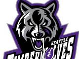 Seattle Timberwolves