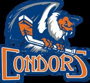 Bakersfield Condors AHL