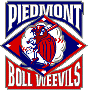 Piedmont Boll Weevils