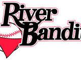 Quad City River Bandits