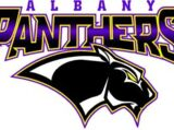 Albany Panthers