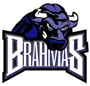 Fort Worth, Texas Brahmas
