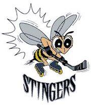 New England Stingers