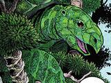 Великая Черепаха