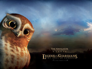 Kinopoisk.ru-Legend-of-the-Guardians 3A-The-Owls-of-Ga 92Hoole-1372925--w--1600