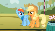 Rainbow Dash and Applejack