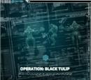 Operation: Black Tulip