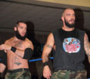 The Briscoes