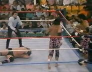 1.9.88 WWF Superstars.00003