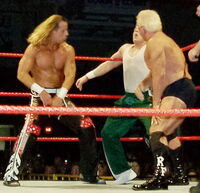 HBK-and-Flair-backhand-chops