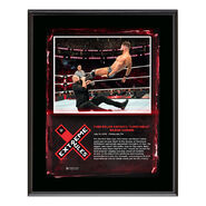 Finn Bálor Extreme Rules 2018 10 x 13 Plaque