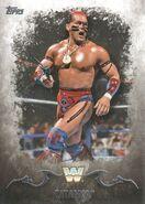 2016 Topps WWE Undisputed Wrestling Cards Tatanka 93