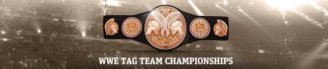 WWE-TagTeam banner